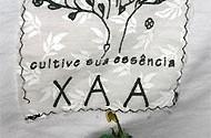 XAA_AE_7